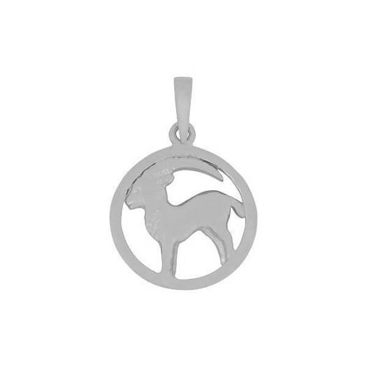 Stjernetegn i sølv - 2 størrelser - STENBUKKEN
